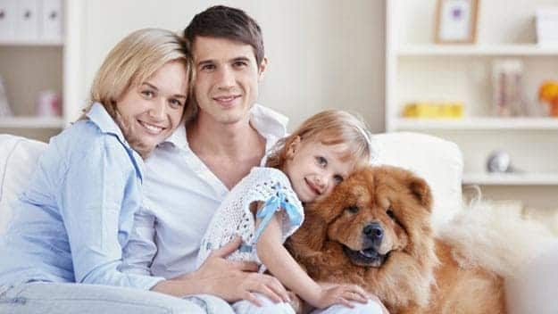 Wills & Trusts dog-young-family Direct Wills Warwickshire